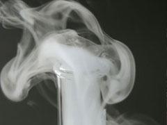 シロアリ駆除薬剤の安全性の画像