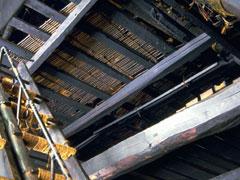 シロアリ:防除工事と保証の画像
